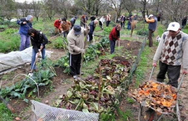 coltivare-orti-illegale