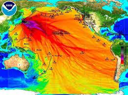 radioattivita-fukushima