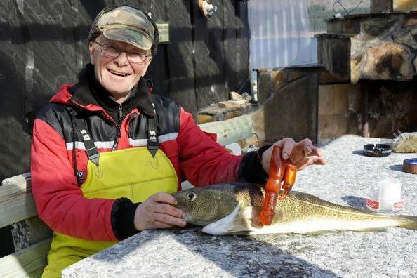 Un pescatore norvegese trova un vibratore nello stomaco di un merluzzo