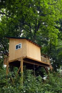 casa albero6