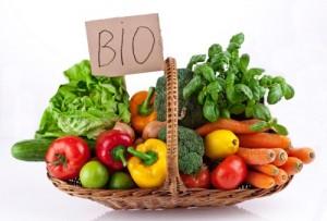 cibo-bio
