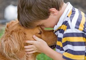 il benessere del tuo cane