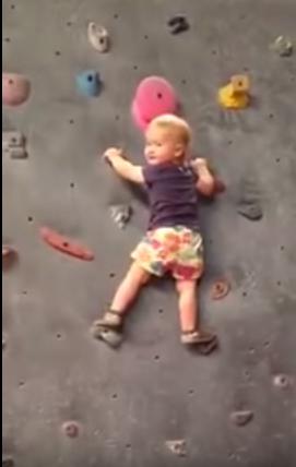 bimbo scalatore