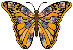 Butterfly-art-butterflies-clipart-best